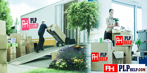 Smart Reliable Movers and Packers Delhi