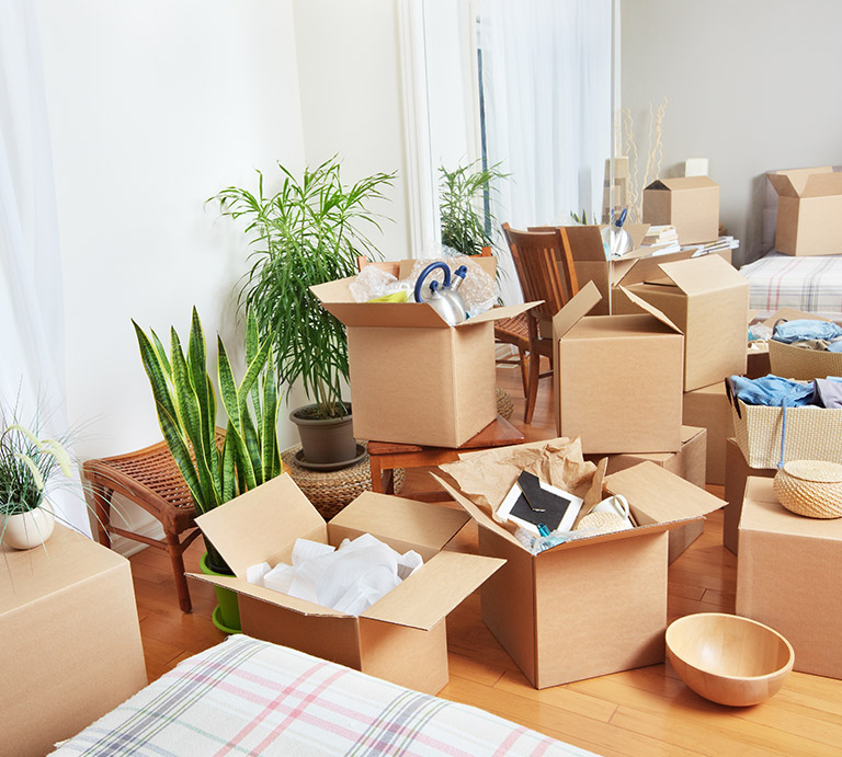 Domestic Home Goods Relocation